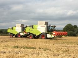 Техника CLAAS обеспечивает до 30% рентабельности при возделывании озимых пшеницы и рапса