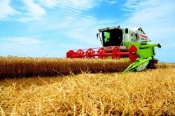 Российские аграрии предпочитают отечественные комбайны