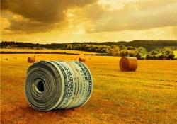 Рынок сельхозтехники: на низком старте!