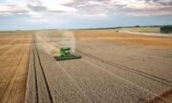 Белорусские аграрии перенимают бразильский опыт