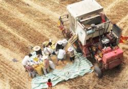 Украина намерена выпускать сельхозтехнику совместно с Италией и Китаем