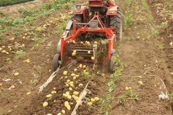 Новинки картофелеуборочных комбайнов