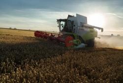 Комбайн TUCANO продемонстрировал свою универсальную эффективность на полях Татарстана