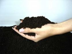 Мировое сообщество обеспокоено состоянием почв
