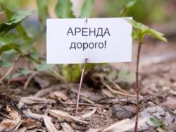 Арендная плата за земли сельхозназначения: поднимать или не поднимать?