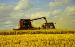 Сельхозпроизводителей коснутся изменения в Налоговом кодексе