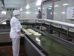 Российские фермеры переработку молока доверяют импортной технике