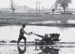 Тяжелый мотоблок, миниферма и развитие почвосберегающих технологий