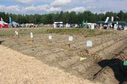 20-21 августа состоится Международная выставка «Евразийский картофель - 2015»