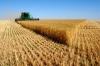 Аграрии начали сбор ранних зерновых культур