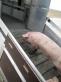 Полуприцеп-скотовоз Тонар-9826-0000010