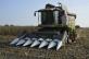 Жатка для уборки кукурузы универсальная OptiCorn