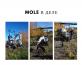 Мини экскаватор Mole