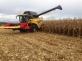 Жатка для уборки кукурузы Ziegler CornChampion