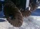 Сеялка механическая GREAT PLAINS 3S-4010 сошники