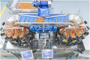 Автоматическая линия по взвешиванию и упаковки томатов черри и ягод в контейнер ракушка